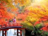 du lịch Nhật Bản vào mùa thu